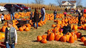 Pumpkin festivals are a good alternative to Halloween