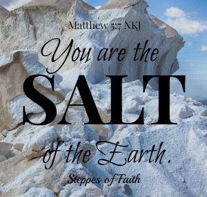 You are the salt of the earth. Matthew 5:7 NKJ