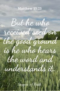 But he who received seed on the good ground is he who hears the word and understands it. Matthew 13:23