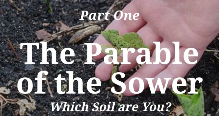 Taking the Riddles Out of the Parables_Part One: The Parable of the Sower, Which Soil are You? by Steppes of Faith