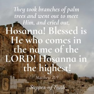 Hosanna! Blessed is He who comes in the name of the Lord! Hosanna in the highest! Matthew 21:9