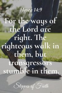 """The ways of the Lord are right. The righteous walk in them, but transgressors stumble in them."" Hosea 14:9"