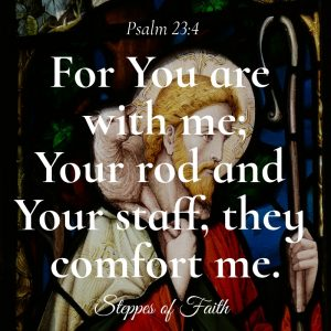 """For You are with me; Your rod and Your staff, they comfort me."" Psalm 23:4"