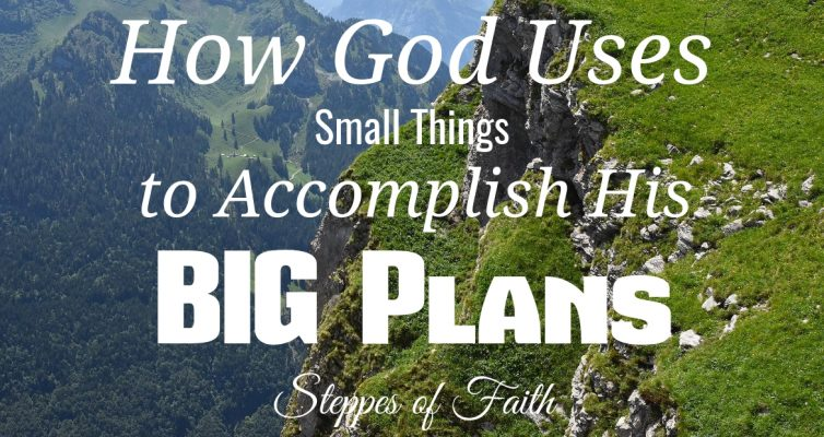 How God Uses Small Things to Accomplish His Big Plans by Steppes of Faith