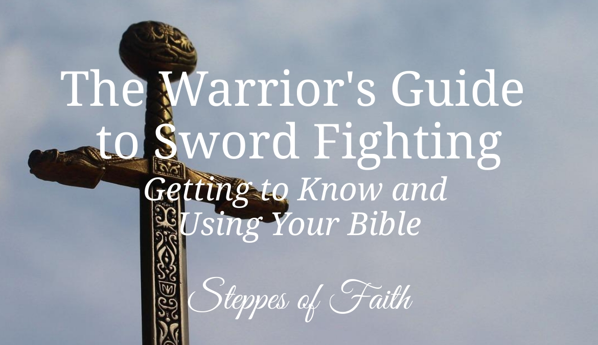 The Warrior's Guide to Sword Fighting: Getting to Know and