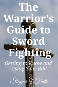 """The Warrior's Guide to Sword Fighting: Getting to Know and Using Your Bible"" by Steppes of Faith"