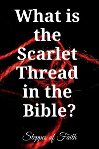 """What is the Scarlet Thread in the Bible?"" by Steppes of Faith"