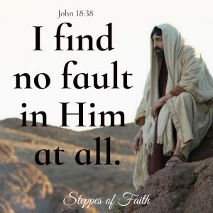"""I find no fault in Him at all."" John 18:38"