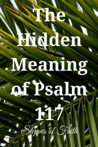 """The Hidden Meaning of Psalm 117"" by Steppes of Faith"