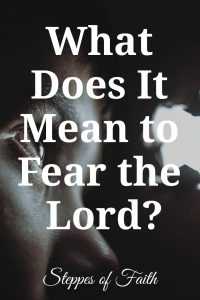 "Title: ""What Does It Mean to Fear the Lord?"" by Steppes of Faith"