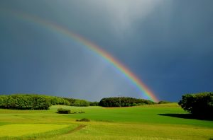 God put a rainbow in the sky to remind that He promises to never flood the earth again.