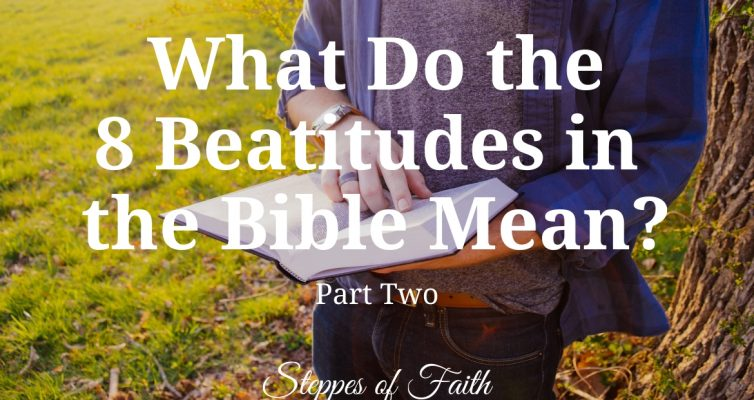"""What Do the 8 Beatitudes in the Bible Mean? Part Two"" by Steppes of Faith"