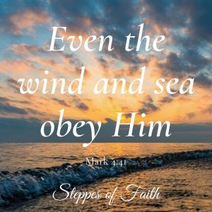 """Even the winds and sea obey Him."" Mark 4:41"