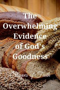 """The Overwhelming Evidence of God's Goodness"" by Steppes of Faith"