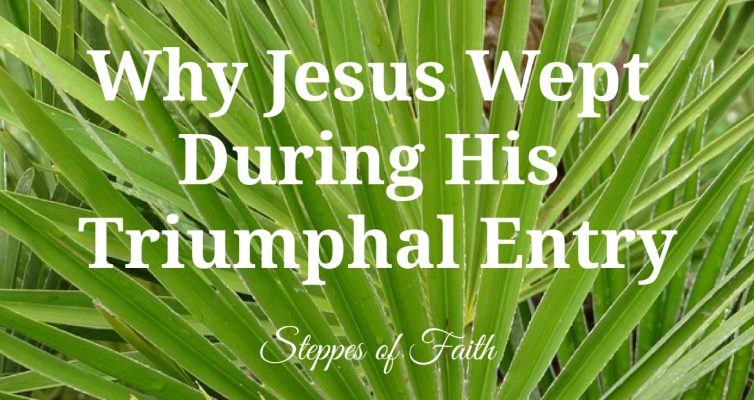 """Why Jesus Wept During His Triumphal Entry"" by Steppes of Faith"