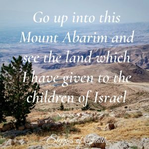 """Go up into this Mount Abarim and see the land which I have given to the children of Israel."" Numbers 27:12"
