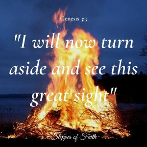 """I will now turn aside and see this great sight."" Genesis 3:3"