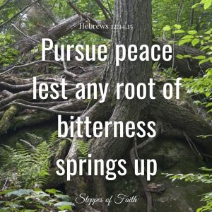 Pursue peace lest any root of bitterness springs up. (Hebrews 12:14-15)