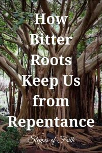 How Bitter Roots Keep Us from Repentance - Steppes of Faith
