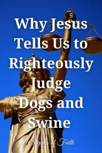 Why Jesus Tells Us to Righteously Judge Dogs and Swine by Steppes of Faith